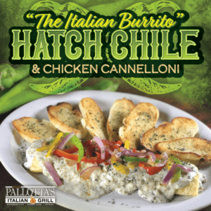 September Feature - social hatch chile cannolloni